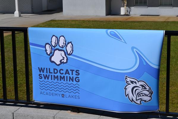 Swim Team Celebration (2014)