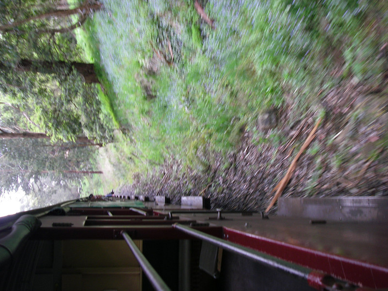 Puffing Billy and Phillip Island 040.JPG
