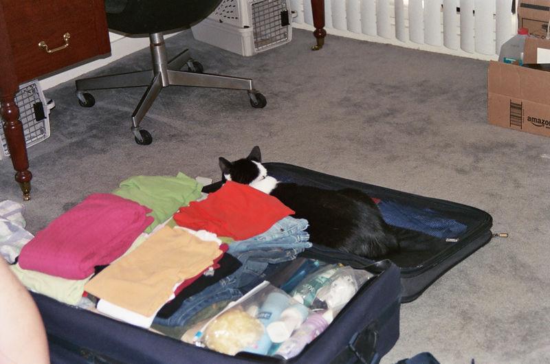 2005 10 08 - Packing 02.JPG