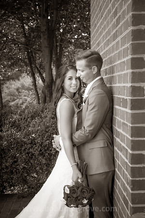 8-19-17 Steve and Nicole Sample Gallery