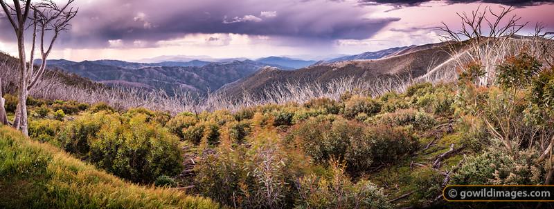Stormy Range