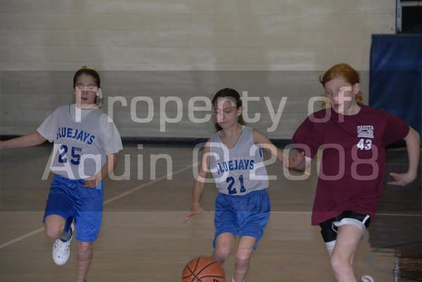5th-6th girls bball at dakota 1.7.09