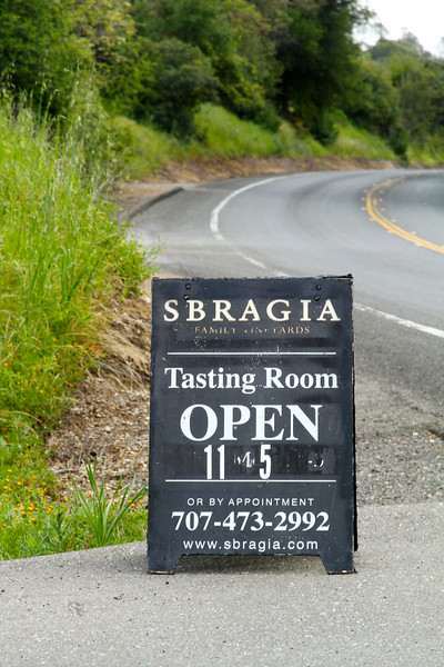 SONOMA WINE COUNTRY DURING DOG SHOW  1595.jpg