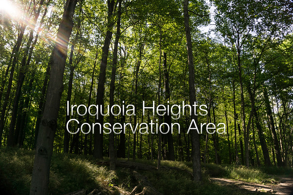 Iroquoia Heights Conservation Area