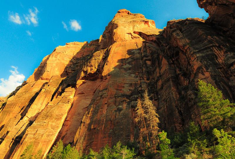 Utah W101 new 2200-80-6595.jpg