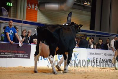 UK Livestock Event 2015