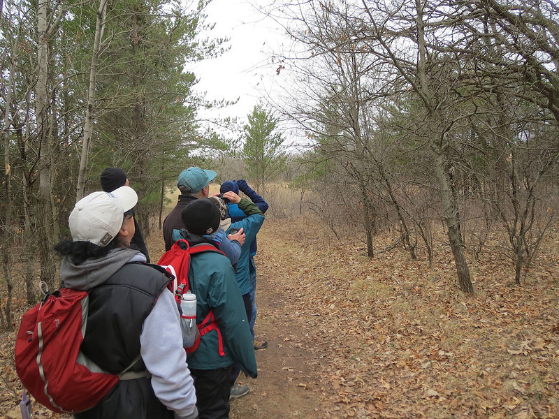Hiking and looking for birds in Wild River State Park Minnesota.