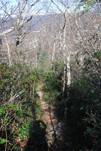 Little Table Rock Trail -- 3,500'