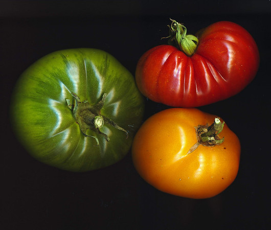2011 fruits of the garden