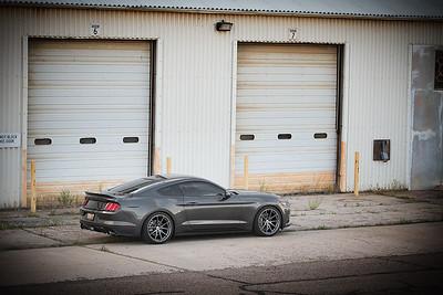Mustang (07.03.16)