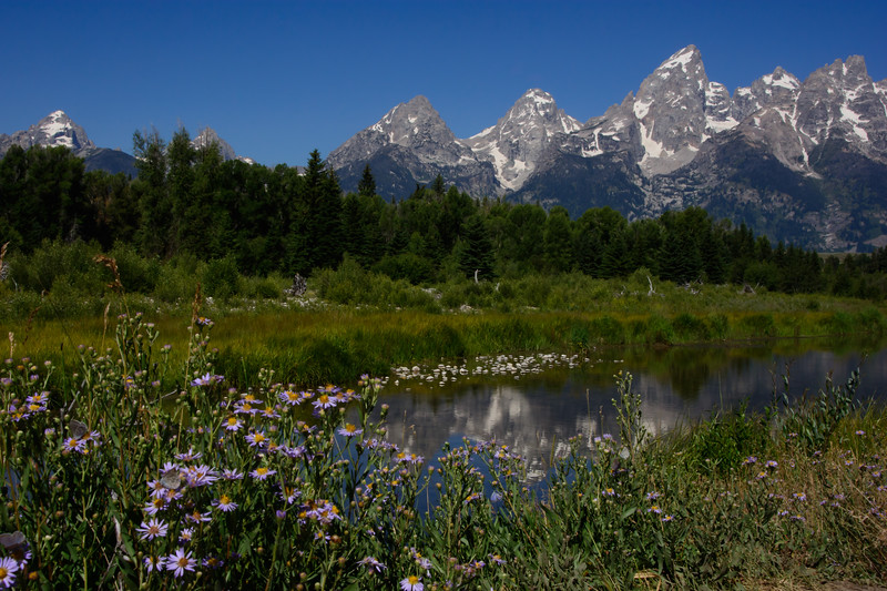Tetons-Take-Two-105.jpg