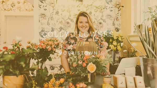 COLLY FLOWERS ////// MORRISTOWN
