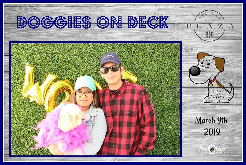 Doggys on Deck53.jpg