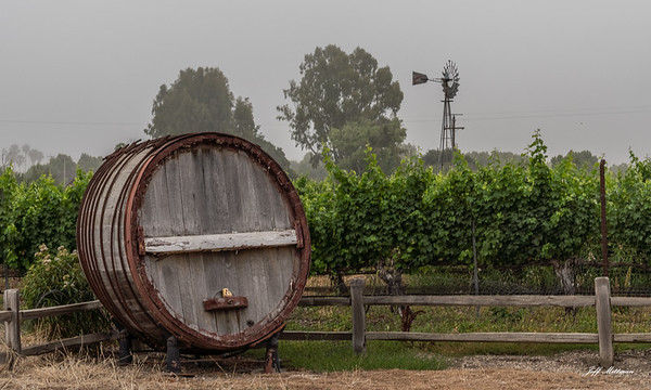 2019 July Santa Ynez Valley