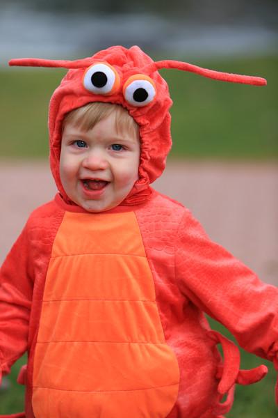 Wyatt's First Halloween 100.jpg