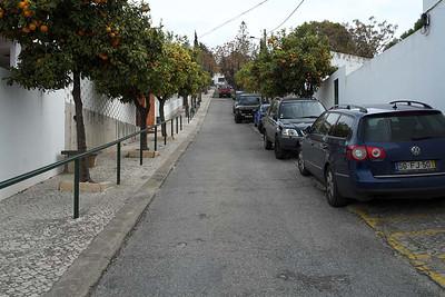 Sunday 9 March 2014 : Paderne, Algarve