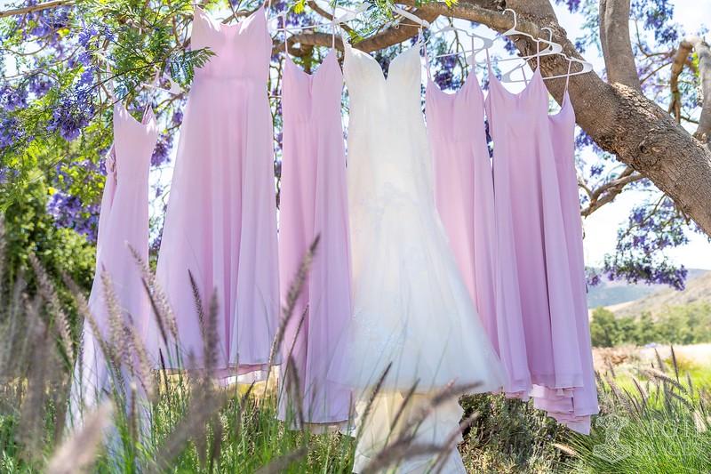 1--GETTING READY-DRESSES-10.jpeg