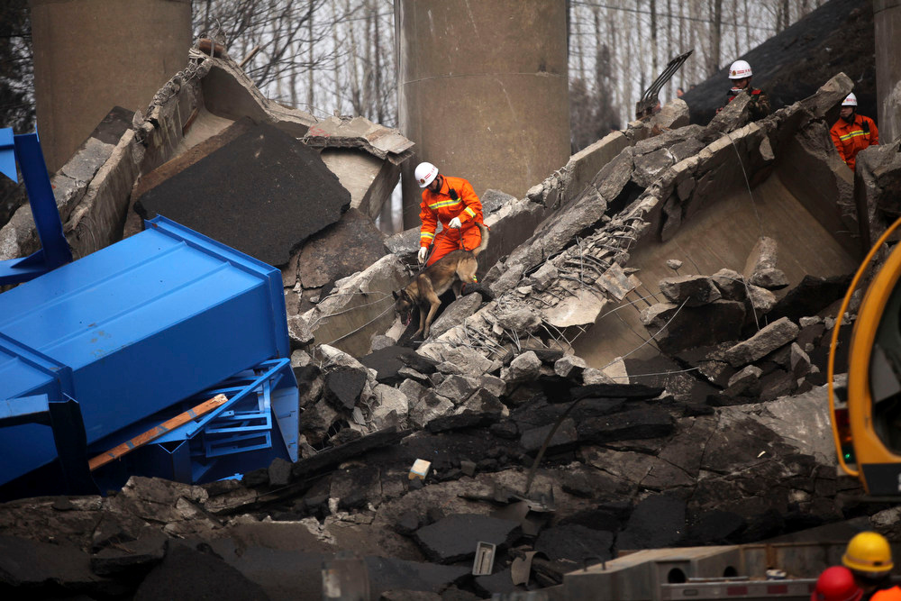 Description of . A rescue worker with a dog looks for victims at the accident site where an expressway bridge partially collapsed due to a truck explosion in Mianchi County, Sanmenxia, central China's Henan Province, Thursday, Feb. 1, 2013. A truckload of fireworks intended for Lunar New Year celebrations went off Friday in a massive, deadly explosion that destroyed part of an elevated highway in central China, sending vehicles plummeting 30 meters (about 100 feet) to the ground. (AP Photo)