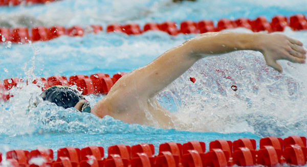 Division II and Division I Sectional Swimming at