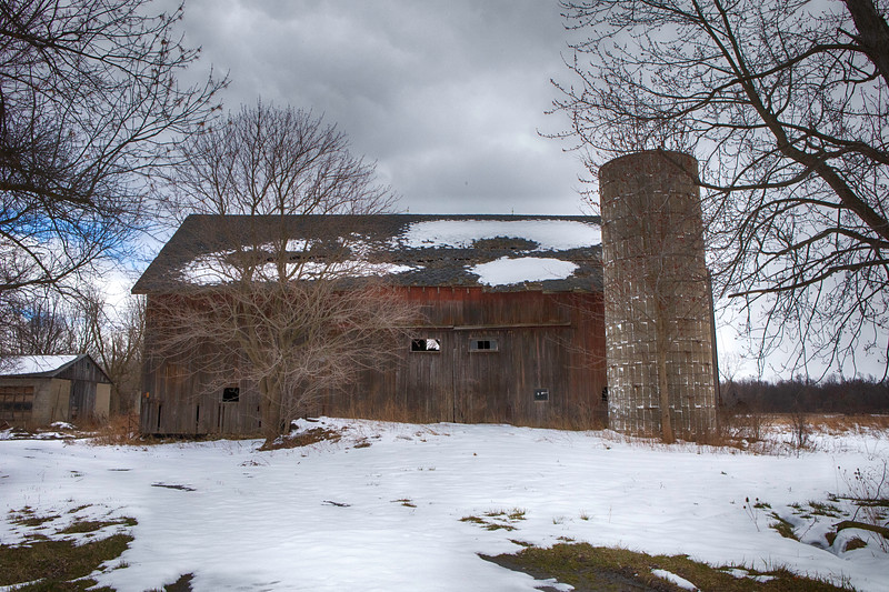 naigara and barns, snow-7126.jpg