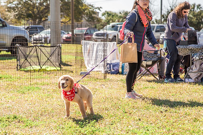 Aylas Acres Dog Walk 3/7/20