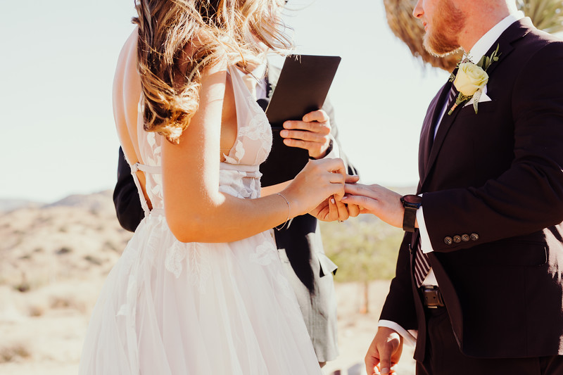 Elise&Michael_Wedding-Jenny_Rolapp_Photography-569.jpg