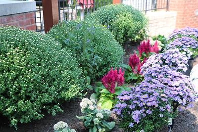 Commissioner Ellis @ Benson Center for Miracle League garden