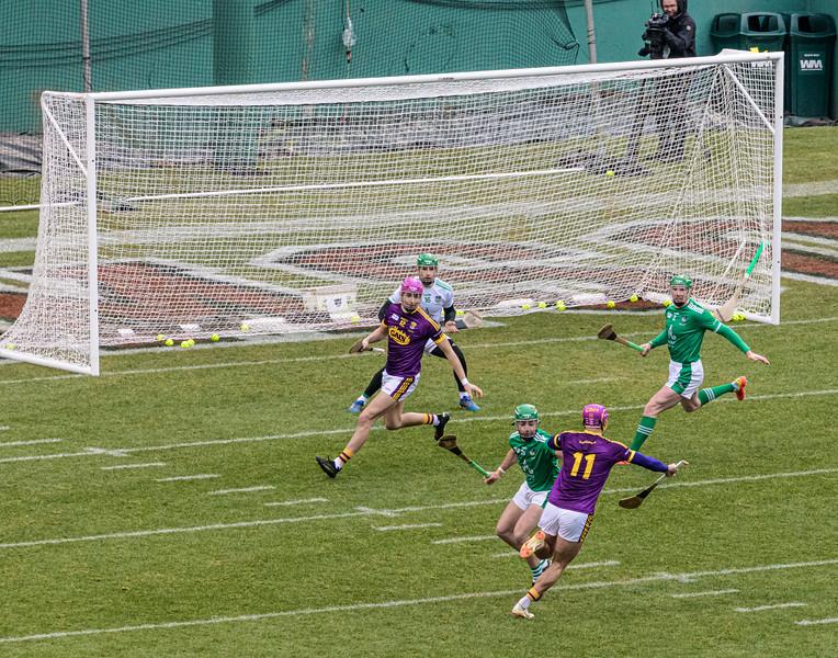 2018 Limerick vs Wexford -_8503676.jpg