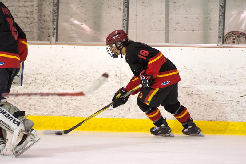 20180202 BI Hockey 019.jpg