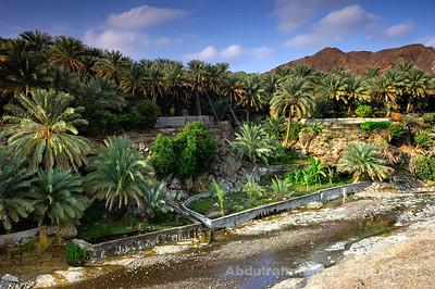 Al Batinah North