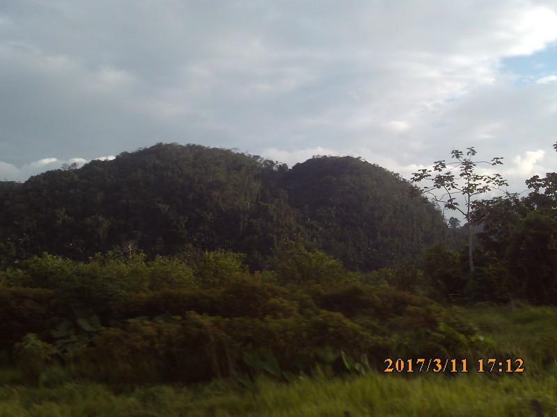 SUNP0601.JPG