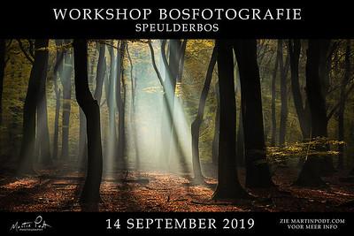 2019-09-14 Workshop Speulderbos