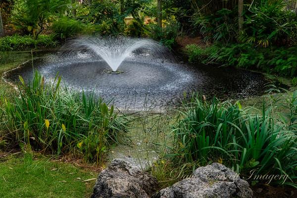 Florida Botanical Gardens, Largo FL