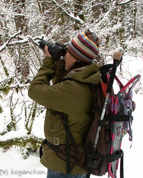 tradition lake, tiger mountain december 2008