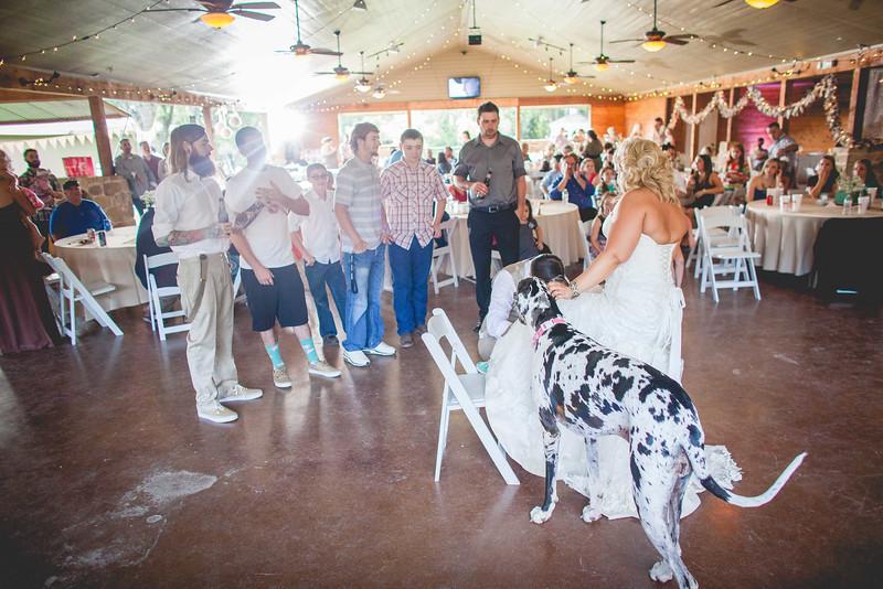 2014 09 14 Waddle Wedding - Reception-725.jpg
