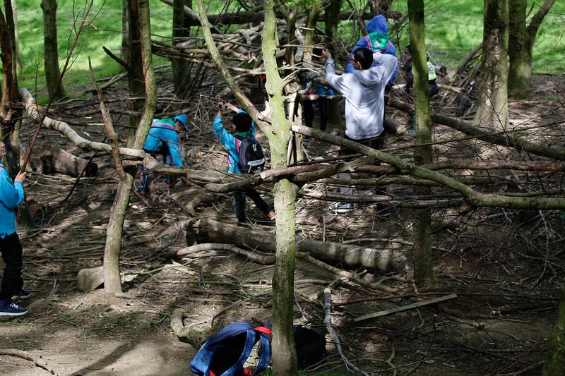 Scouts Brockholes (32 of 107).jpg
