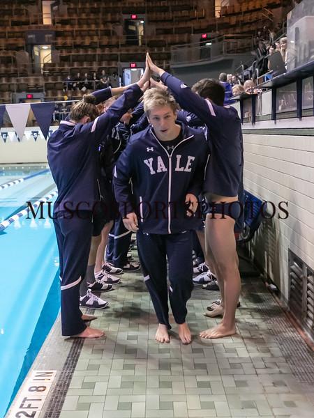 Swimming-diving vs Seton Hall_863.jpg