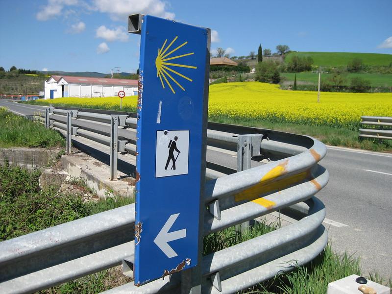 En route to Puente la Reina - Johanna Frymoyer *12