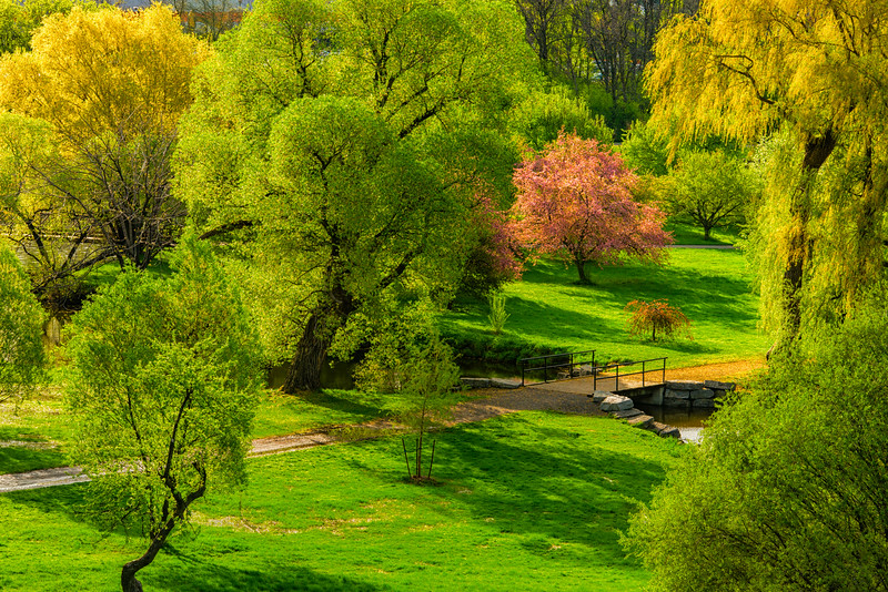 Arboretum springtime colours_May 17-2014_01.jpg