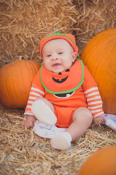 pumpkinpatrick-0003.jpg