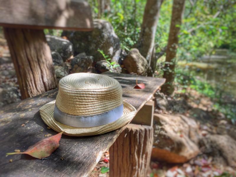 The Hat_4.jpeg