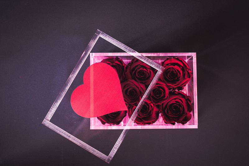 Rose Inspired Valentines Collection-5599.jpg