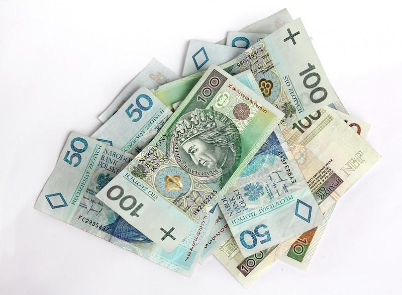Polish currency