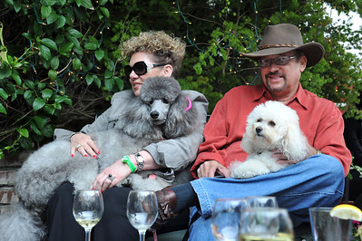Poodle Day 2012-Cypress Inn Party