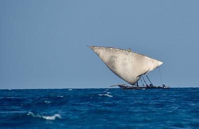 Zanzibar: August 2019