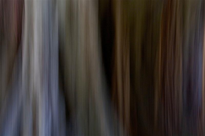 _MG_0835.jpg