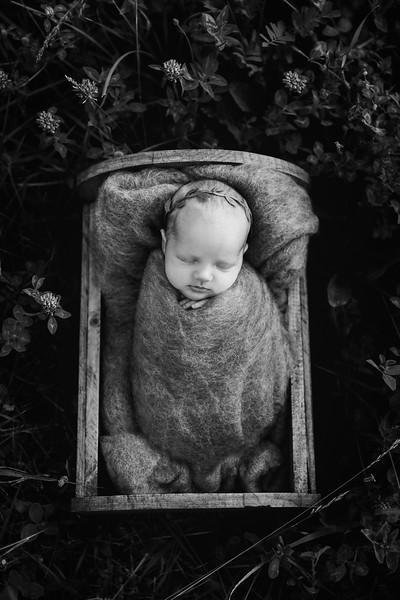 Autumn-Newborn-Low-Resolution370A0250-Edit-2.jpg