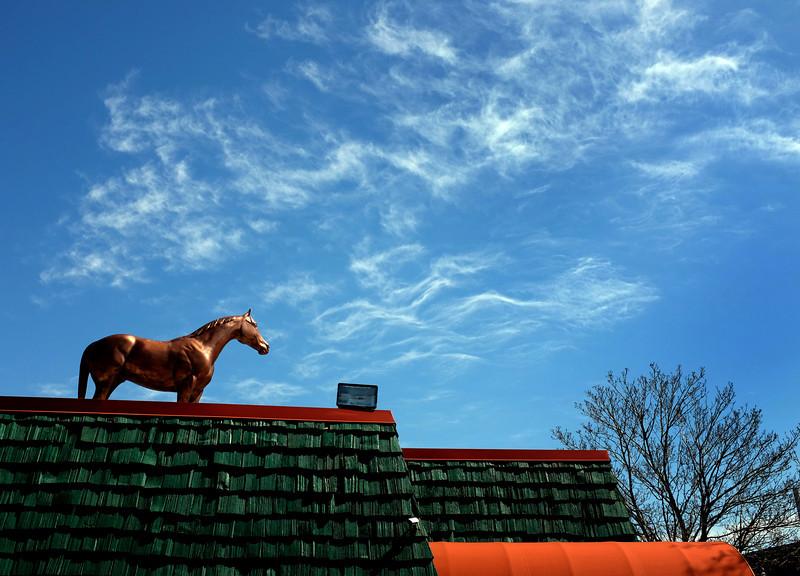 greendot_horse.jpg
