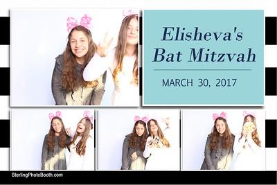 Eisheva's Bat Mitzvah