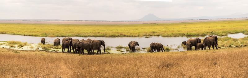 Tanzania_Safari-best-pano-02.jpg